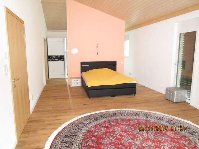 Grosszügiges Einfamilienhaus mit Gästezimmer