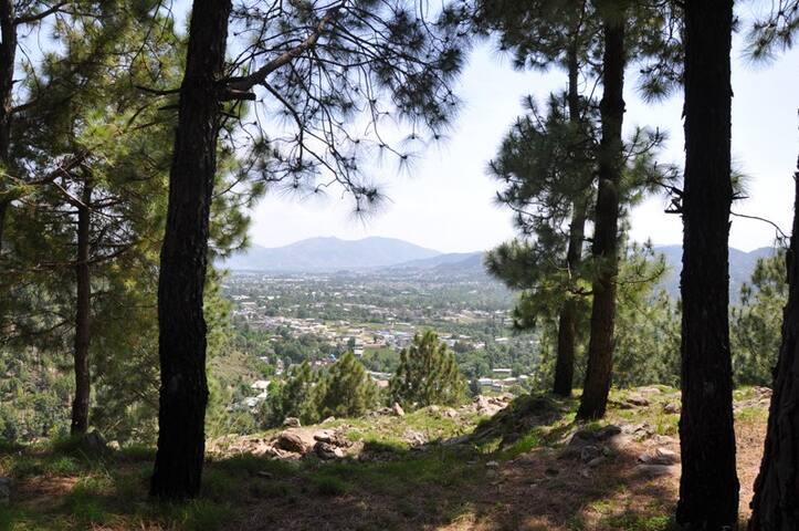 Serenity of Nathia Gali in Abbottabad   .......