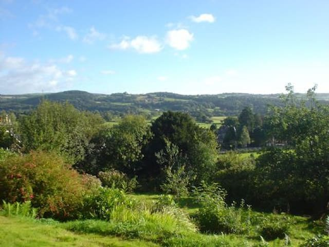 The view over the garden