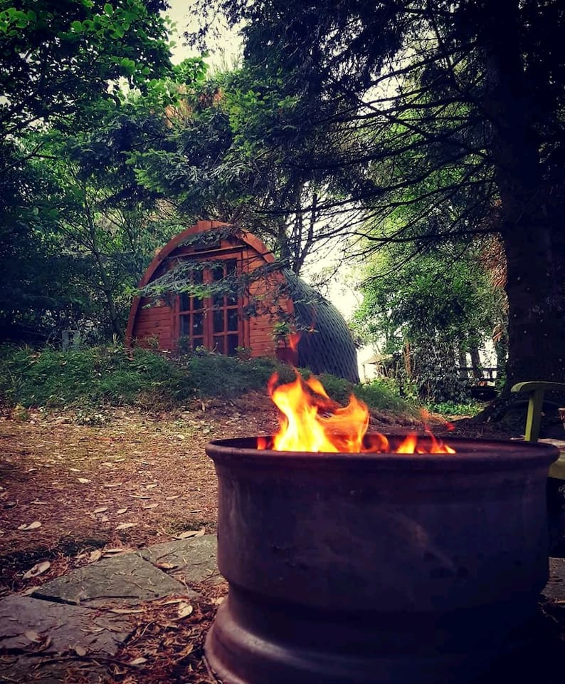 View from the firepit. Photo by Rebecca Molloy.