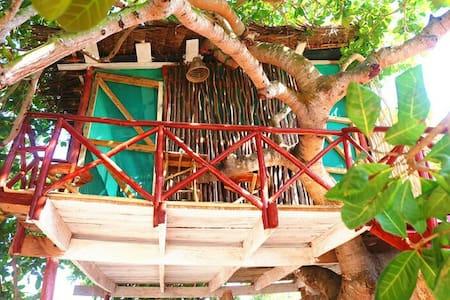 Tree house - Lombház