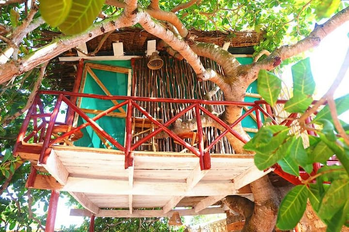 Tree house in diani beach