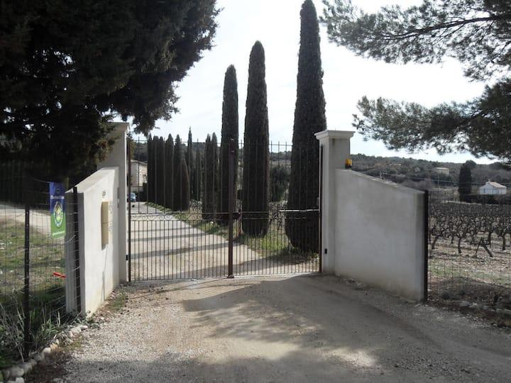 Gîte dans domaine viticole au Pied Mont Ventoux