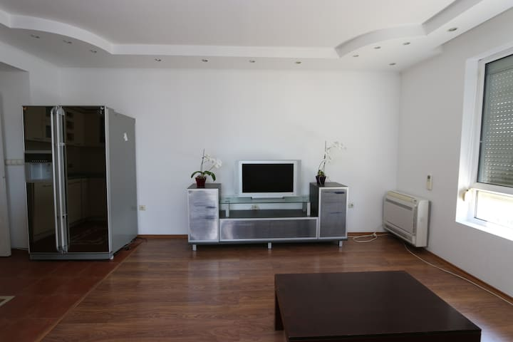 spacious sunny apartment