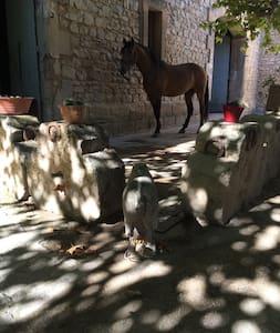 Mas en provence - Maussane-les-Alpilles