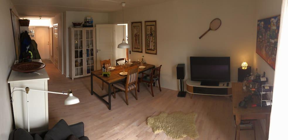 Big, Cozy 2 bedroom apt. with a sunny terrace - København - Apartment