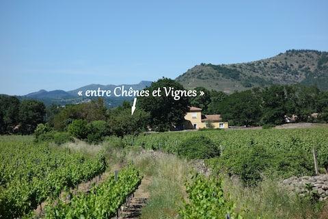 """""""Entre Chênes et Vignes"""" proche rivière et Aubenas"""