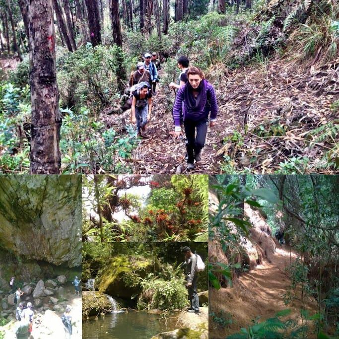 Salida a senderos y caminatas cerros orientales y zona rural, experiencias comunidades en Bogotá
