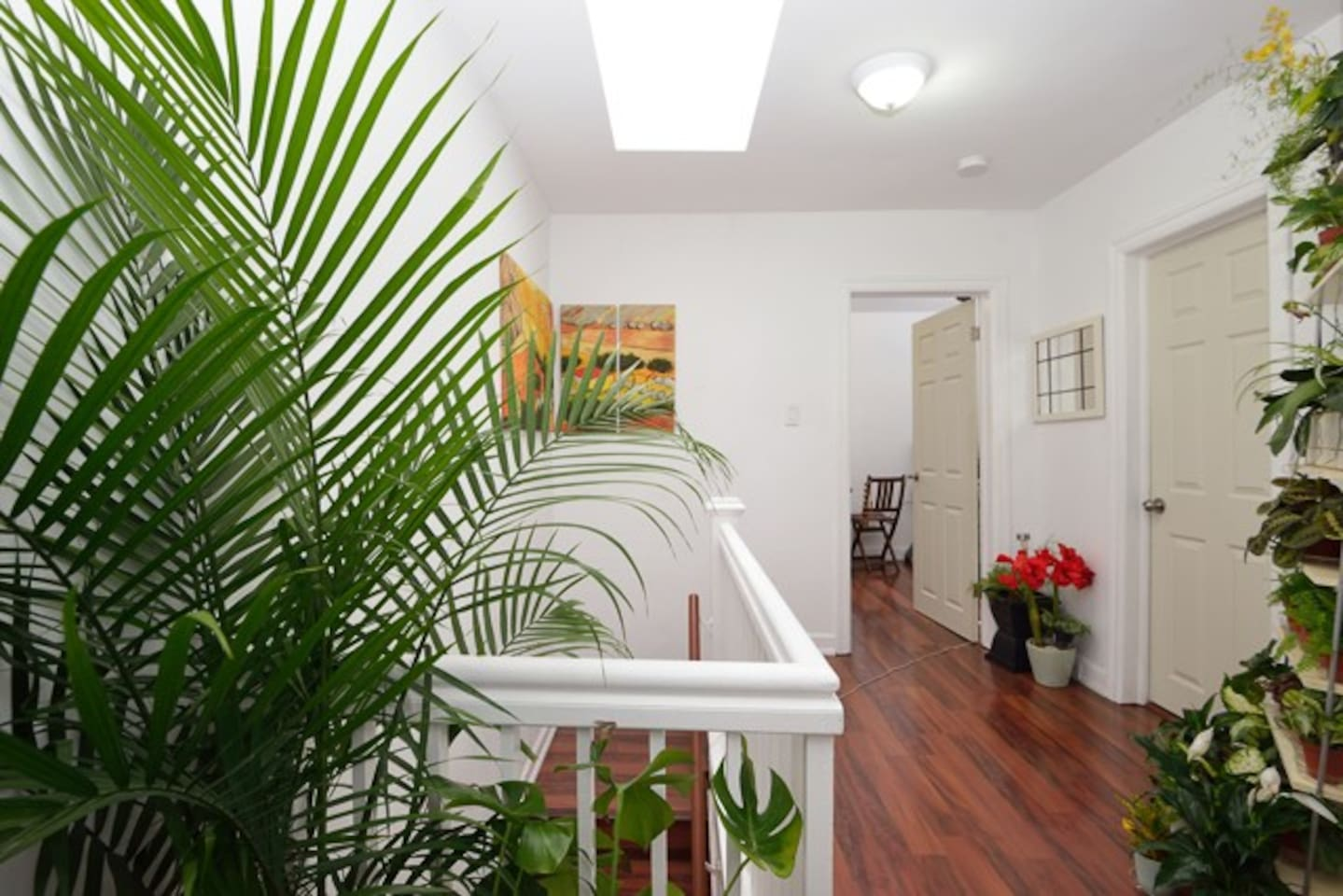 Hallway to Bedrooms and Bathroom, Skylight and Mini Garden