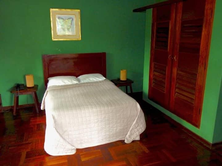 La Casa Fitzcarraldo Green Room