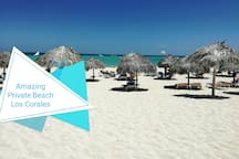 Amazing beach with umbrellas and beach chairs available for free