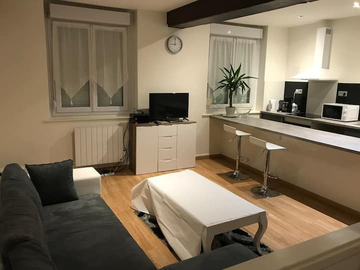 Appartement charmant et calme à Haubourdin