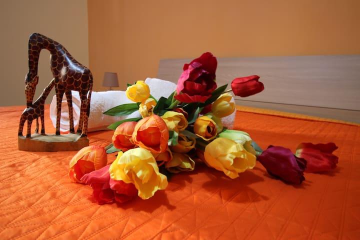 B&B VistaMare arancione