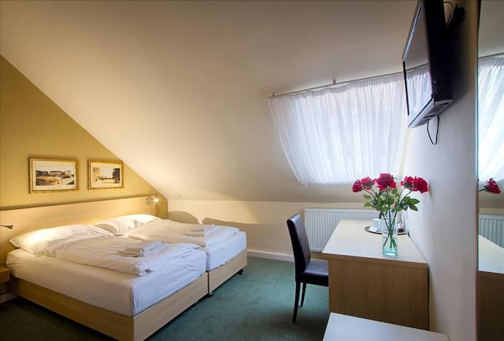 Economy Attic Double room in hotel TAURUS