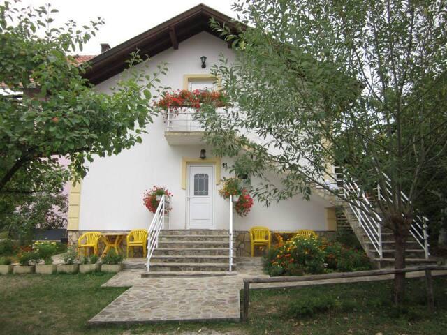 Zlatibor Apartmani Vukomanović S4