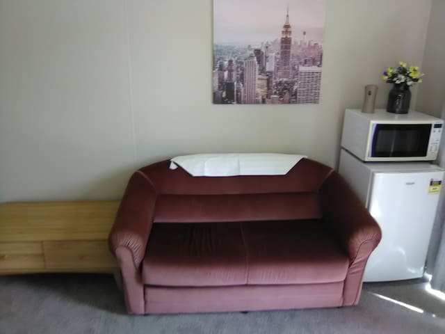 Pull out sofa, microwave and fridge all in room