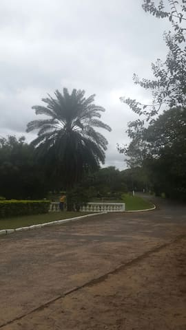 En jardín tropical dos cómodos apartamentos. - Asuncion Asunción, Asunción, PY - Dům