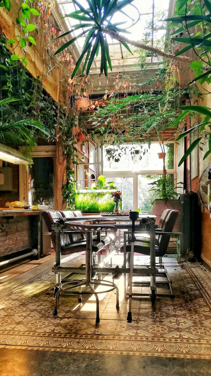 Urban jungle loft, well equipped, great location ❤