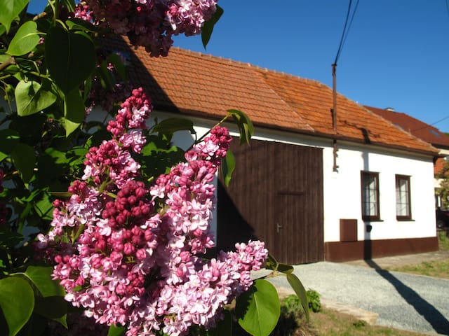 Cosy cottage with great garden and winery beside - Radějov - 木屋