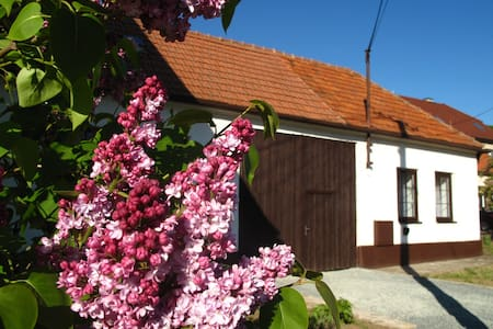 Cosy cottage with great garden and winery beside - Radějov - Chalé