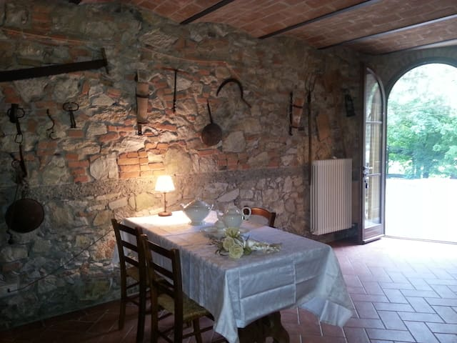 Rustic apartment in the countryside - Capannoli - Apartamento