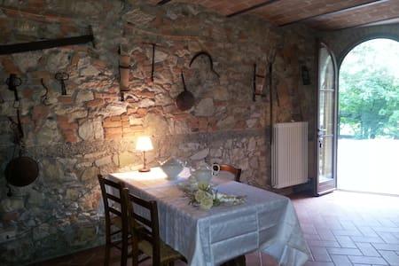 Rustic apartment in the countryside - Capannoli - Apartament