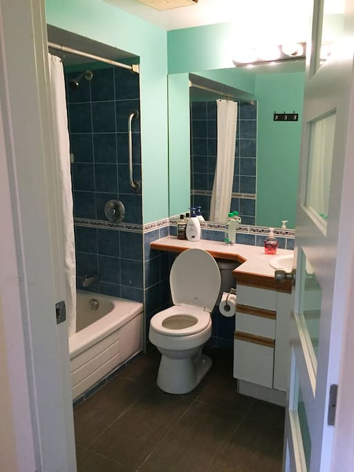 Bathroom: bath/shower/toilet/sink - comes with shampoo, conditioner, soap, toilet paper, towels & hair dryer