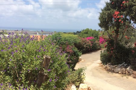 sea sight artist village apartment - Ein Hod - Apartamento