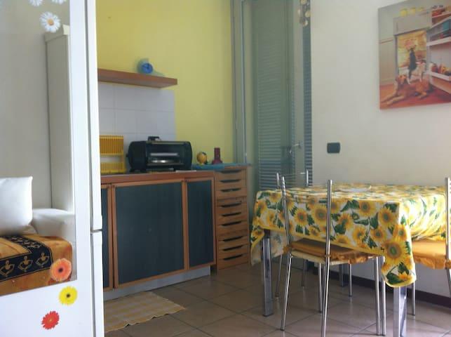 Grazioso appartamento sul lago maggiore - Sesto Calende - Apartamento