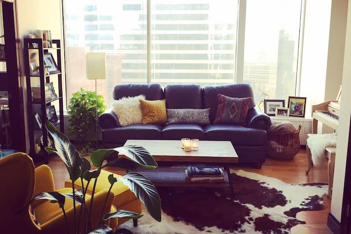 New Luxury Downtown St. Louis - St. Louis - Loft