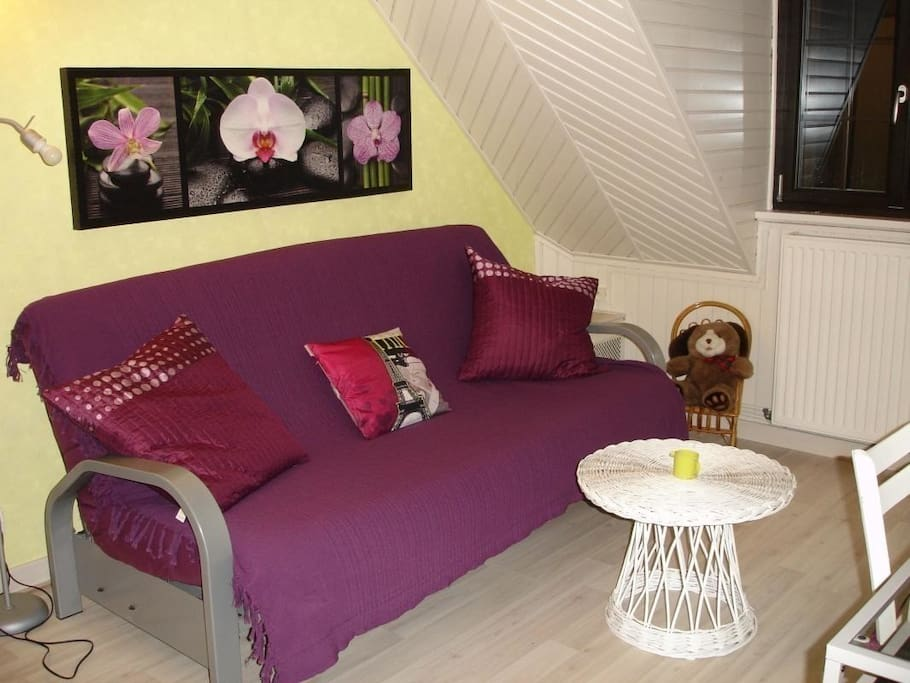 Salon privatif avec canapé convertible 2 places
