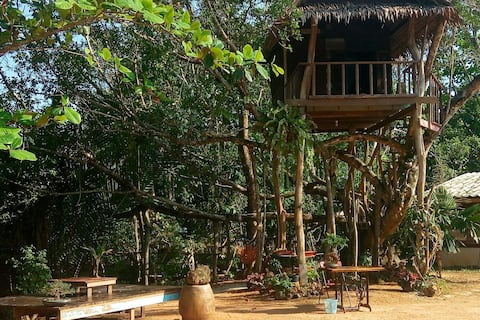 Bansai Guesthouse