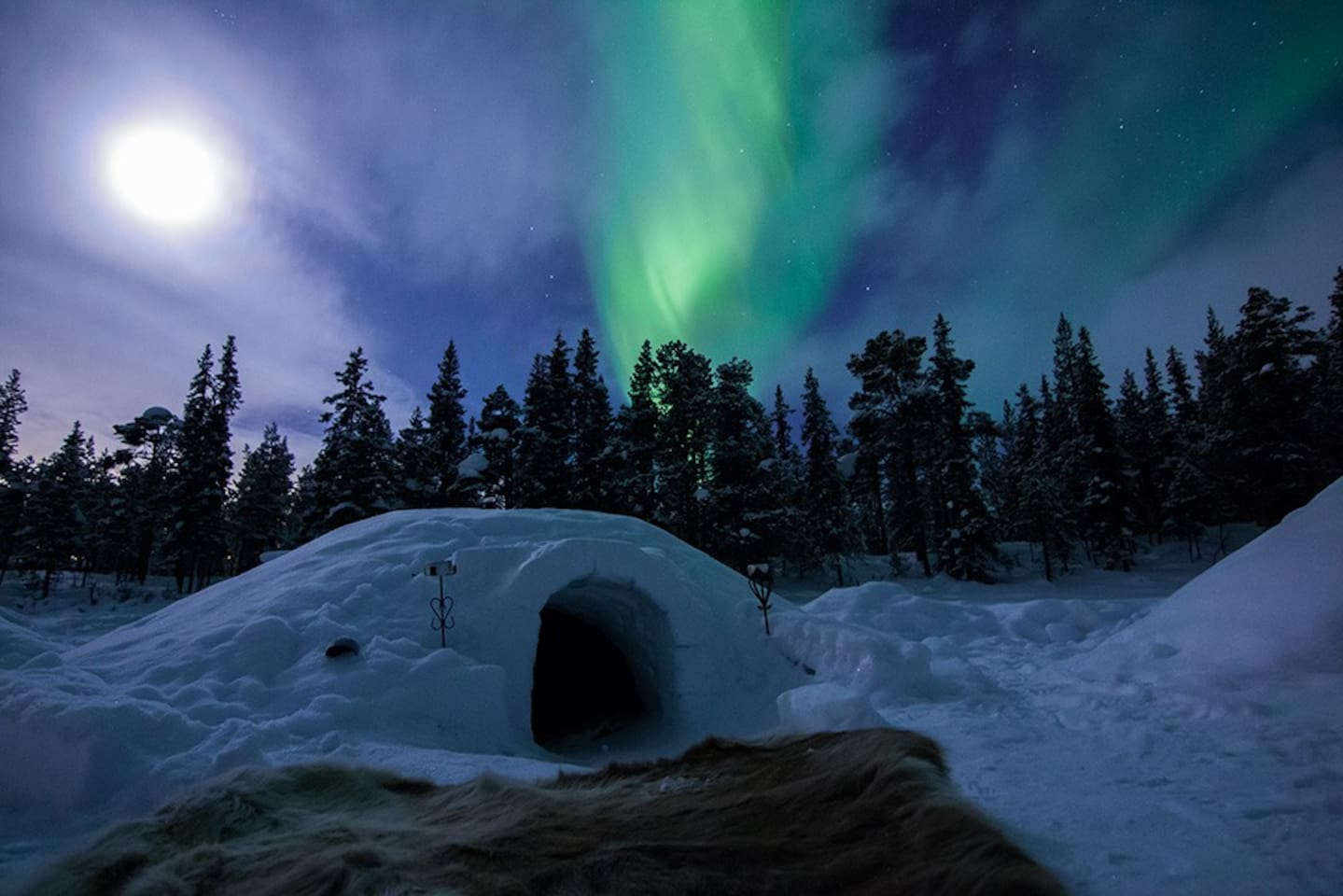 Watching the northern lights from your igloo in winter