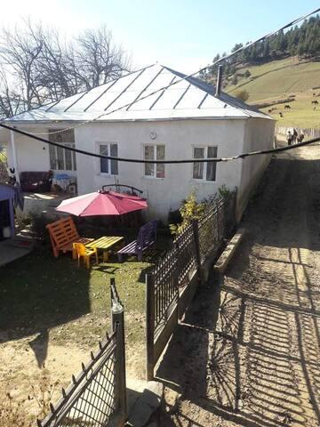 Guest house Tsvirmi/Shorena