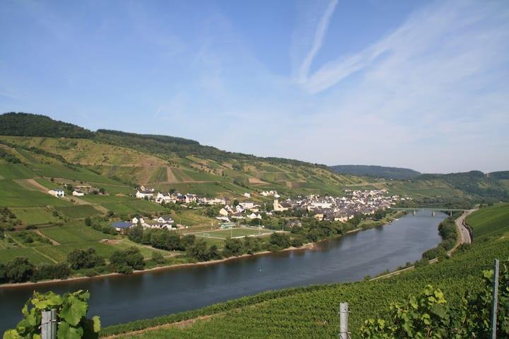 *Gästezimmer*  im  Weingut - Brennerei  Emil Dauns