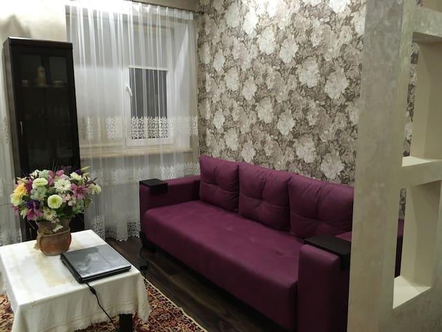 Beautiful Apartment Truskavets