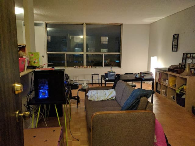 Great Location Entire Apt for FAMILY - Waterloo - Leilighet