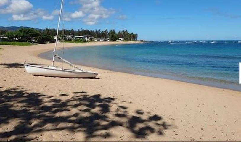 Haleiwa Dream Location