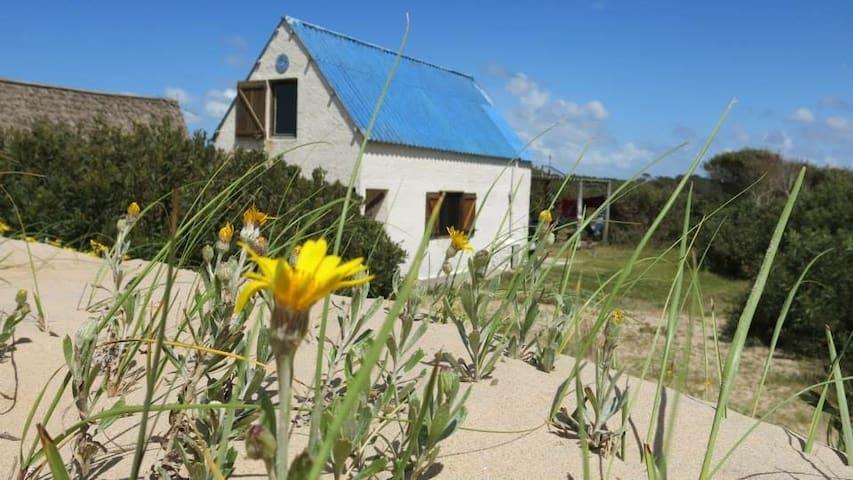 Rancho El Ojo, a 50 metros del mar - Valizas - Cottage