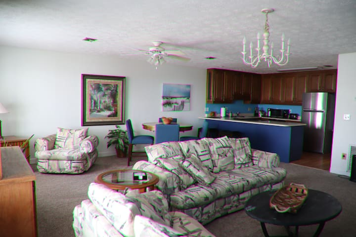 Open style Living & Dining area, Full Kitchen. Enjoy a Beautiful view  of Lagoon, Bay & Oak trees from the huge windows.