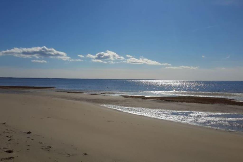 Silver Springs Beach