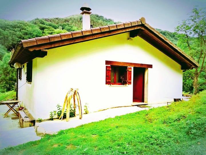Preciosa y acogedora casa, en la zona de sidrerias