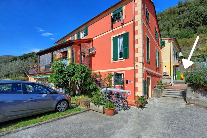 Levantino - Apartment in Levanto