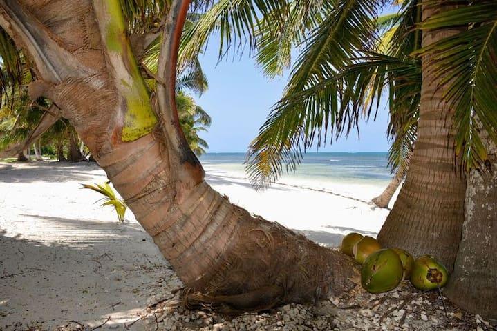 Paradise a few steps from the sea! - San Pedro - Teljesen felszerelt lakás