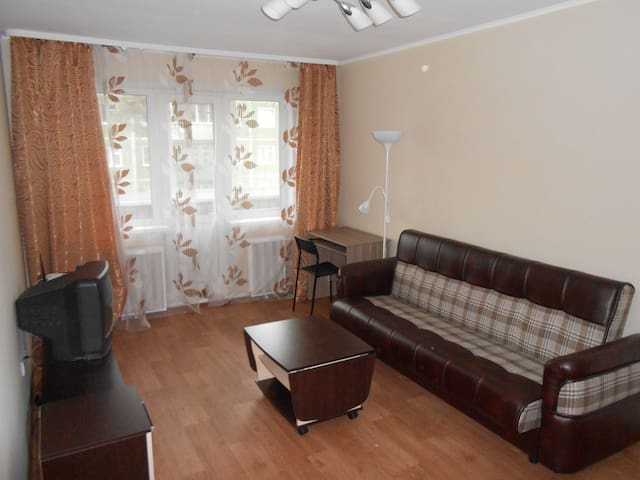 An apartment in the Akademgorodok - Новосибирск - Apartment
