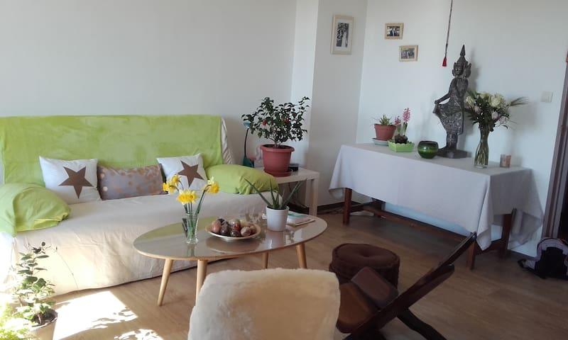 Les Hirondelles 10mn centre Avignon - Avignon - Bed & Breakfast
