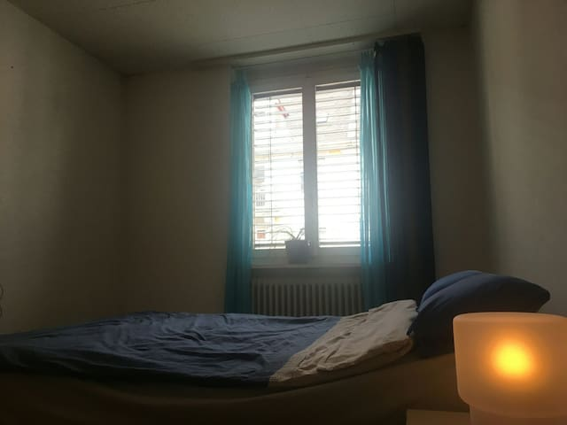 Comfy and big room in Zurich Wiedikon