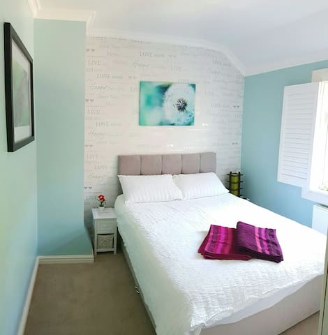 Lovely Green Double Room - London - House