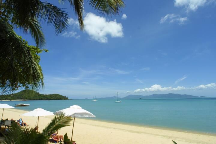 Affordable Beachfront Bungalow on Koh Samui