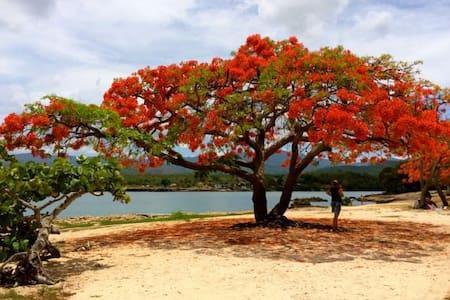 Playa de Trinidad with A/C CASA ILIANA Y PAPA 2 - La Boca - Casa
